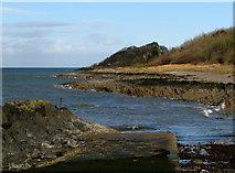 J4482 : Shore near Helen's Bay [2] by Rossographer