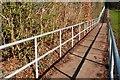 J3876 : Knocknagoney Park, Belfast (2) by Albert Bridge