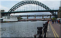 NZ2563 : Bridges over the Tyne by Peter Church
