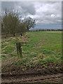 SE9234 : West Hill Farm? by Paul Harrop