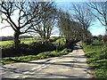 SX1686 : Lane at Tremail by Derek Harper
