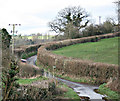 ST7256 : 2008 : Faulkland Lane near Stony Littleton by Maurice Pullin