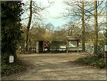 TL7604 : Danbury Country Park by Robert Edwards