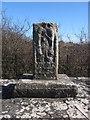 O1568 : Wayside cross, west face by Kieran Campbell