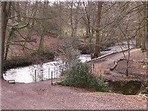 SJ8383 : River Bollin and Kingfisher Bridge by Peter Fuller