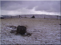 SD7695 : Summit, Swarth Fell Pike by Michael Graham