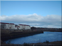 NS5565 : Clydebrae Basin by Lynn M Reid