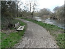 SZ0995 : Redhill: riverside bench by Chris Downer