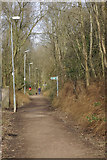 NS5574 : West Highland Way, Milngavie by Stephen McKay