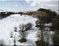 SE9143 : Kiplingcotes Chalk Pit by Paul Glazzard