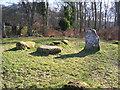 NN7821 : Standing Stones in Cemetery wood by Andrew Scobie
