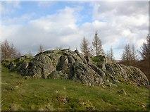NY3404 : Neaum Crag by DS Pugh
