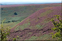 SE8493 : Hole of Horcum by John Sparshatt