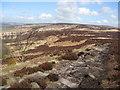 SK2676 : Footpath - View back along White Edge by Alan Heardman
