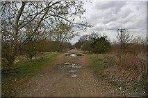 TQ5683 : Towards Bramble Lane by Glyn Baker