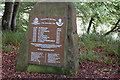 NU2002 : Guyzance Tragedy Memorial by John Sparshatt