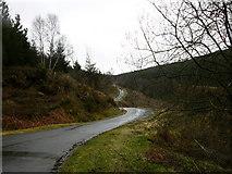 SH8010 : Mountain Road by liz dawson