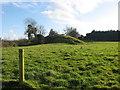 O1268 : Mound at Lisdornan by Kieran Campbell