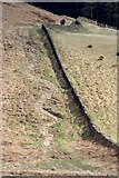 NZ5812 : Stony Path up to Newton Moor by Mick Garratt
