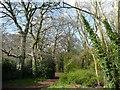 SU8990 : Footpath into Fennell's Wood by Jonathan Billinger