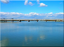 TQ2105 : Railway Bridge, River Adur by Simon Carey