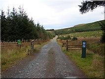 SN8587 : Track in Hafren Forest by John Lucas