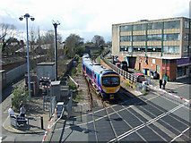 TA2609 : Wellowgate Level Crossing by David Wright