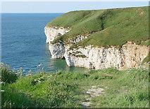 TA2372 : Chalk Cliffs, Flamborough Head by Peter Church