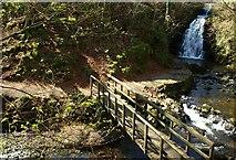 J3996 : Spring at Glenoe (2) by Albert Bridge