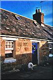 NJ9505 : Footdee cottage plus 'ammonite'! by Carol Walker