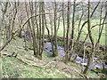 NY3308 : River Rothay by David Brown