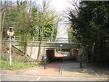 SU6351 : Cycle way under the A30 - Cliddesden Road by Sandy B