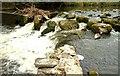 J3267 : The Eel Weir, Edenderry (3) by Albert Bridge