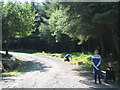 SX2078 : A forest track in Halvana Forest near Altarnun on Bodmin Moor by Rod Allday