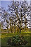TQ3095 : Flowerbed, Oakwood Park, Prince George Avenue, London N14 by Christine Matthews