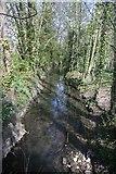 TL8663 : River Linnet, Bury St Edmunds by Bob Jones
