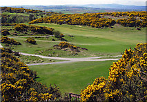 J4772 : Scrabo Golf Course by Rossographer