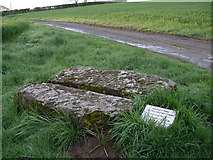 SO5763 : The Poets Stone by Martin Horwood