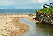 J4682 : The shore at Crawfordsburn (1) by Albert Bridge