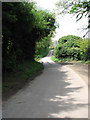 TG0730 : Corpusty Road past Rookery Farm by Evelyn Simak