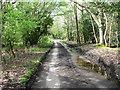 TG0630 : Mill Lane by Evelyn Simak