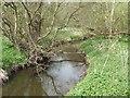 SJ6935 : River Tern upstream of Tunstall Hall by John M
