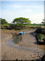 TM1923 : Tree, boat, creek by Zorba the Geek
