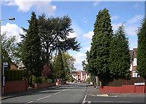 SO9096 : Mount Road, Penn, Wolverhampton by Roger  Kidd
