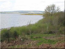 G9820 : Looking up Lough Allen by Oliver Dixon