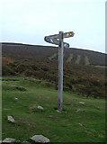 SJ1663 : Signpost below Moel Famau by michael ely