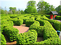 D3807 : The 'Northern Ireland Maze', Carnfunnock Country Park by Rossographer