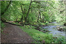 SX4970 : Footpath and River by Tony Atkin