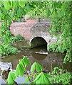 SO8577 : Hurcott Lane Bridge by Mat Fascione