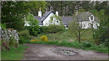 NM4099 : Estate buildings, Kinloch, Isle of Rum by Calum McRoberts